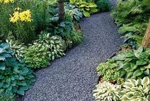 gardening and outside / by Cyndi Sullivan
