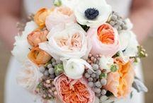 wedding / by Sophia Aslami