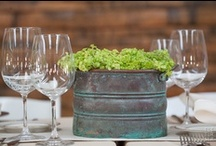 "Non-Floral Centerpieces / Potted centerpieces are a great ""green"" cost effective option. Consider using herbs, succulents, wheatgrass, or local produce in place of, or with flowers. After your event they can be taken home by guests, donated, or planted in your own garden!"
