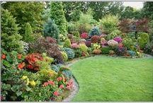Our garden ideas / by N.Buchanan