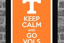 Go Vols! / by Susan House