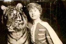 CIRCUS / Circus, vaudeville, carnival, side show, burlesque, fair, amusement park / by Hanna Meronen