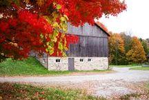 Fall Fun Burlington 2015 / Fall in love w/ #BurlON...so much to see & do this autumn. Check out our blog for ideas http://bit.ly/fallburlon15