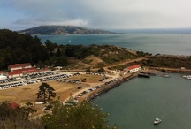 San Francisco / Photos by Dena Budrecki  / by Betsy Rettler