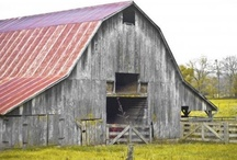Rustic Structures  / Vintage Barns - Potting Sheds - Outhouses / by Rosalee Menard