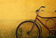 Life On Two Wheels / by Lia | sugar & snapshots