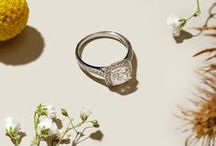 Diamond Rings / A photo collection of some of our engagement and fashion rings looking their best.