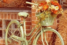 Vintage<3 / I love the feel of Vintagggeee<3 / by Madison Shrader