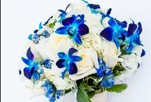 Wedding Flowers- Blue Palette