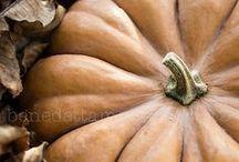 halloween / CorieClark.com Creator of Purposeful Planner