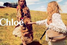 fashion campaigns / by Molly Bishop