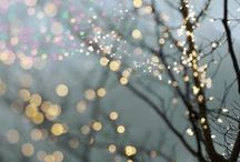 Bokeh; photographic dreamyness / You know the kind of dreamy, soft focus photography with tiny magical glitter floating away in the background.....that's bokeh......