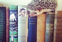 Book Buddies /  animals and books
