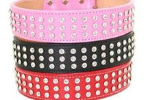Glam Collars / Bling bling! We have some fabulous sparkle collars for any pup!