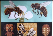 bees & pollinators / a board about bees, bee keeping, hives, honey and garden pollinators.