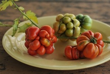 tempting tomatoes / by Laura Watt