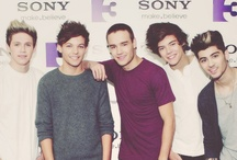 """One Direction / Follow this board if you love One Direction & Liam James Payne & Harry Edward Styles & Zayn Jawaad Malik & Niall James Horan & Louis William Tomlinson <3 To all my followers, I love you all so much! :) You all are so encouraging with all your repins, likes and comments. I love talking to you guys, so comment away! ^.^ You all are amazing, beautiful people. """"...You may not be plastic, but you are fantastic..."""" - Louis Tomlinson <3"""