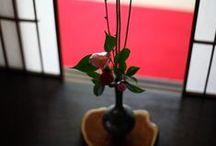 JAPAN_KADO 華道 / ikebana,生花