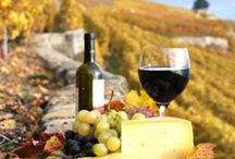 Wine Tasting & Travel / Great wines from around the world. Favorite vineyards and wine country vacations. Gifts and ideas for wine lovers.