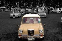Cars_Elf Riley