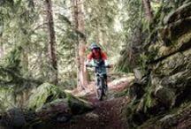 bikes / Ride on.