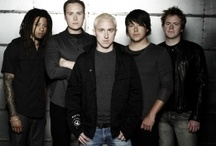 Amazing Bands <3 / My most favorite bands ever! / by Jami Ramos-Reader