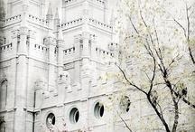 I'm a Mormon / by Dawna Cazier