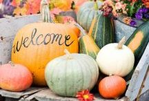 Halloween at the Beach / These beautiful Halloween home decor ideas are far from scary!