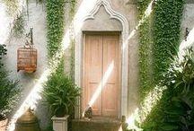 Garden | Yard | Patio
