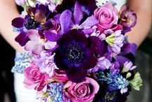 Color Trend: Purple Passion / Two of the Pantone colors of 2014 are highlighted here, Radiant Orchid and Violet Tulip. This trend captures purples from the entire spectrum ranging from fuchsias and pinks to purples and blues.