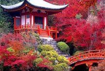 Zen / Japanese inspiration