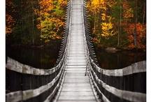 Bridges / by Dan Ashbach / Dan330