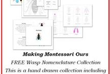FREE Home school Printables / by Cherine Making Montessori Ours