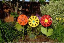 Gardening in Sunny Arizona / by Stephanie