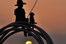 Fishing, Hunting, and the Outdoorsman. / Photography, products and tips for the outdoorsman. Beautiful places to fish, hunt and enjoy the great outdoors.  / by Dan Ashbach / Dan330