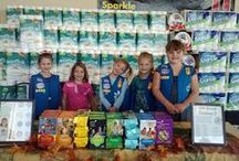 Operation Girl Scouts
