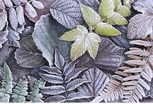 COLOUR - Natural Nature / Colour inspiration and mood boards, inspired by the most natural subdued earthen tones of nature