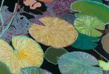 My-Waterlily Paintings / Allan's Waterlily Paintings / by Allan P Friedlander