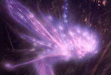 Lilás, roxo, purple...lilac, and purple