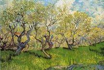 Vincent  Van Gogh / by Allan P Friedlander