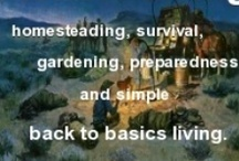 Homesteading/Preparedness / by Jennie Smith