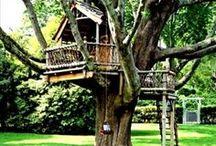 Tree house ideas / by Jennie Smith