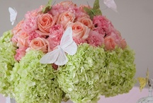 flowers/floral arrangement / by Amber Nicole