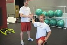 Shoulder Stability / Shoulder stability is fundamental to shoulder health .. how is your shoulder stability ??