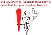 Scapular Mobility / How does your scapula move  ?? ... let me count the ways .. protraction, retraction, elevation and depression ... this board is all about moving yous scapula BETTER.