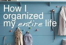Organization / by Dana Anderson Brooks