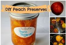 Food | Canning