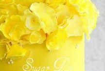 giallo cibo