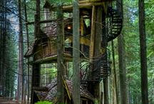 if I were a swiss family robinson.. / by Gillian Mohlman