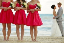 Dream Weddings / by Melly Flores